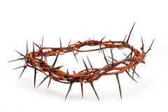 Free Crown Made Of Thorns Isolated On White Royalty Free Stock Photo - 8719165