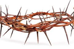 Crown made of thorns Royalty Free Stock Photography