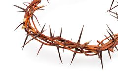 Crown made of thorns Royalty Free Stock Images