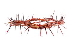 Crown made of thorns. Isolated on white background Stock Photos