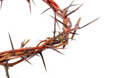 Crown made of thorns isolated on white Stock Photo