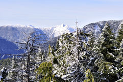 Crown Mountain Winter View with beautiful trees in Stock Photo