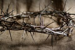 Free Crown Of Thorns Stock Photos - 2109253