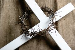 Free Crown Of Thorns Stock Photo - 2109260