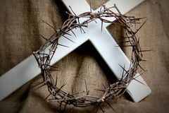 Free Crown Of Thorns Stock Photography - 2109262