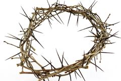 Free Crown Of Thorns Royalty Free Stock Image - 2151636