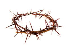 Free Crown Of Thorns Royalty Free Stock Photography - 30609027