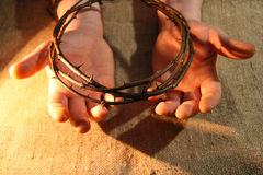 Free Crown Of Thorns Stock Photo - 38144830