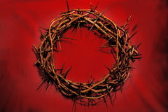 Free Crown Of Thorns Royalty Free Stock Photos - 757818