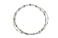 Free Crown Of Thorns Stock Photo - 7999110