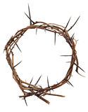 Crown of thorns. Isolated crown of thorns as symbol Royalty Free Stock Photography
