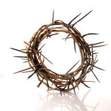 Crown of thorns Stock Photos