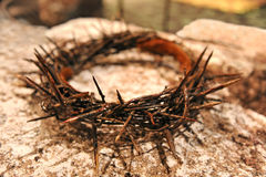 Crown of Thorns royalty free stock photos