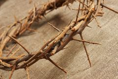 Crown of thorns. A crown of thorns on canvas background royalty free stock image