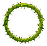 Crown Of Thorns. As a circular plant branch frame with a blank area with pointy needles as a symbol of sacrifice and courage isolated on a white background stock image