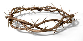 A Crown Of Thorns. Branches of thorns woven into a crown depicting the crucifixion on an isolated background Royalty Free Stock Photos