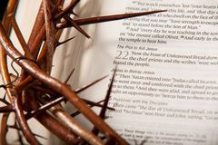 Crown of Thorns & Bible Royalty Free Stock Photo
