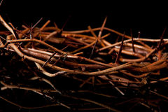 Crown of Thorns on Black Royalty Free Stock Image