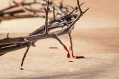 Crown of thorns with blood dripping. Christian concept of suffering stock photos