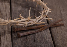 Crown of Thorns Closeup Royalty Free Stock Image