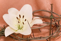 Crown of Thorns, crucifix and Easter  Lily Royalty Free Stock Photos