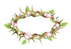 A Crown of Thorns with Fresh Leaves Royalty Free Stock Photo
