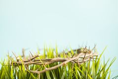 A crown of thorns and grass easter background royalty free stock images