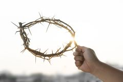 A crown of thorns. In the hand of a man on good friday Stock Photography