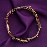 The crown of thorns of Jesus Christ Royalty Free Stock Image