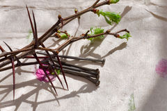 Crown of Thorns and nail Royalty Free Stock Image