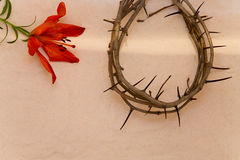 Crown of Thorns and orange Lily Royalty Free Stock Images