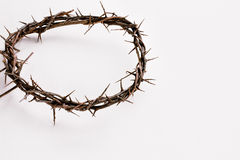 Crown of Thorns over White Stock Photo