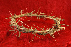 Crown of Thorns on Red Background. Royalty Free Stock Images