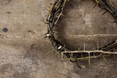 Crown of thorns royalty free stock photo