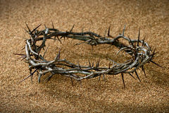 Crown of Thorns on Sand. A crown of thorns on sandy background royalty free stock image
