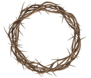 Crown Of Thorns Top. A top view of branches of thorns woven into a crown depicting the crucifixion on an isolated background