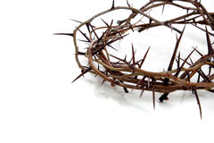 Crown of thorns on a white background Stock Images