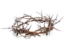 Crown of thorns on a white background Stock Photo