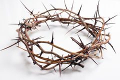 A crown of thorns on a white background - Easter. religion. royalty free stock image