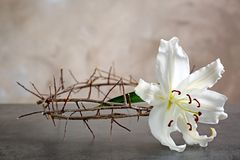 Crown of thorns and white lily. On beige background Royalty Free Stock Image