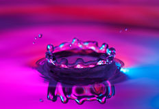 Crown water splash. With reflection Royalty Free Stock Photos
