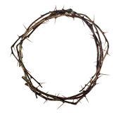 Crown of wood with thorns Royalty Free Stock Image