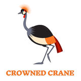 Crowned Crane Line Art Icon Royalty Free Stock Image