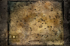 Crows attack. Spooky crows and a broken old barn on a dark night royalty free stock photography
