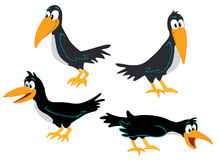 Crows collection. Group of four cartoon crows Vector Illustration