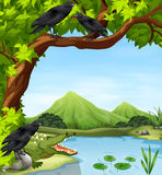 Crows and crocodile by the river. Illustration Royalty Free Illustration