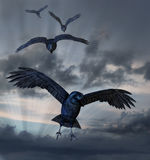 Crows Flying. Crows coming in for a landing against a dark sky - 3d render with sky photo and digital painting. All elements by me (Linda Bucklin Stock Illustration