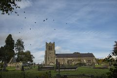 Crows flying over church Stock Photos