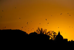 Crows over the Vatican Royalty Free Stock Photos