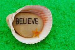 Croyez la pierre dans le Seashell Images libres de droits